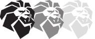 Three Lions - kursy języka angielskiego online i stacjonarne